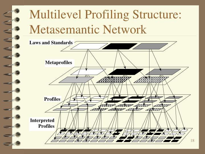 Multilevel Profiling Structure: