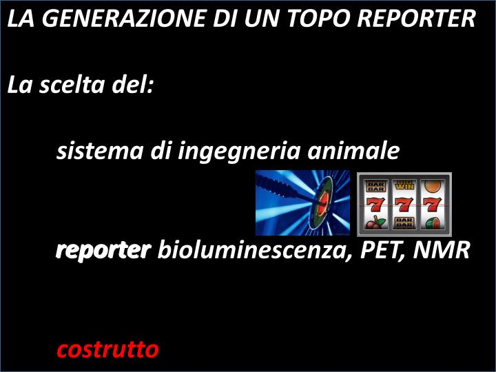 LA GENERAZIONE DI UN TOPO REPORTER