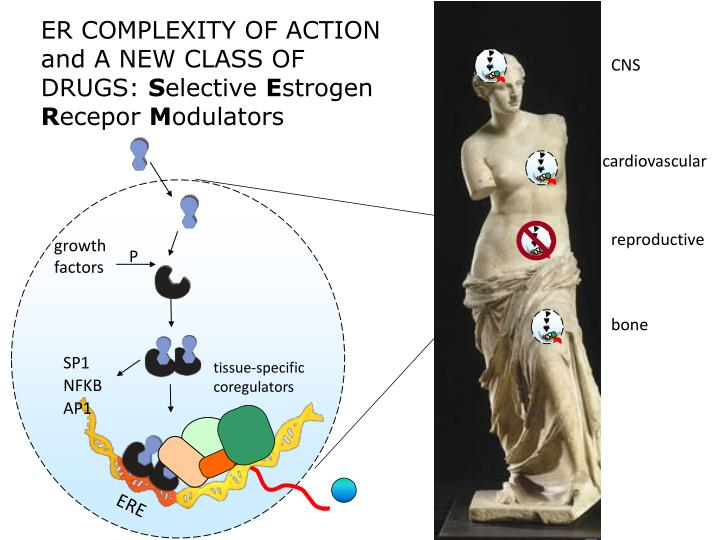 ER COMPLEXITY OF ACTION and A NEW CLASS OF DRUGS: