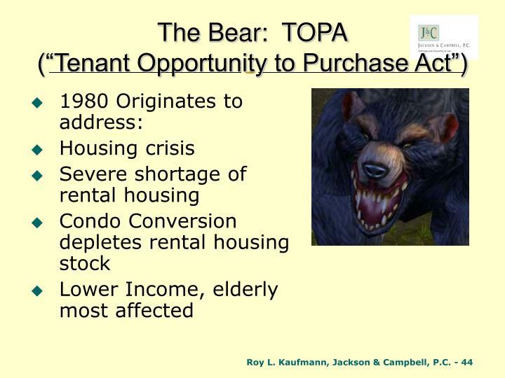 The Bear:  TOPA