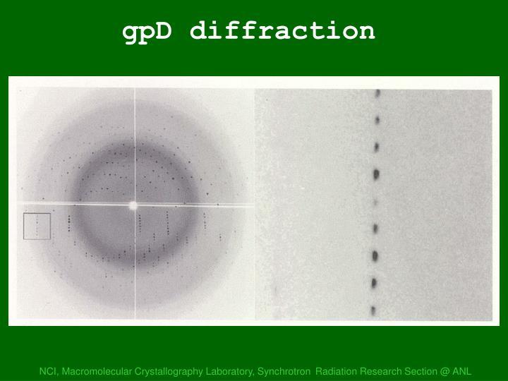 gpD diffraction