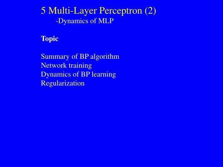 5 Multi-Layer Perceptron (2)