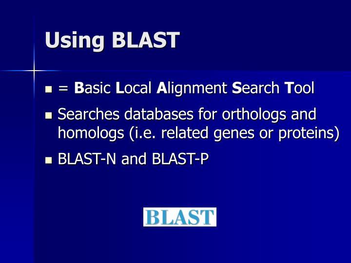 Using BLAST