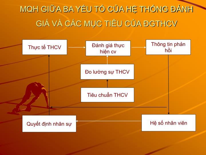 Thực tế THCV