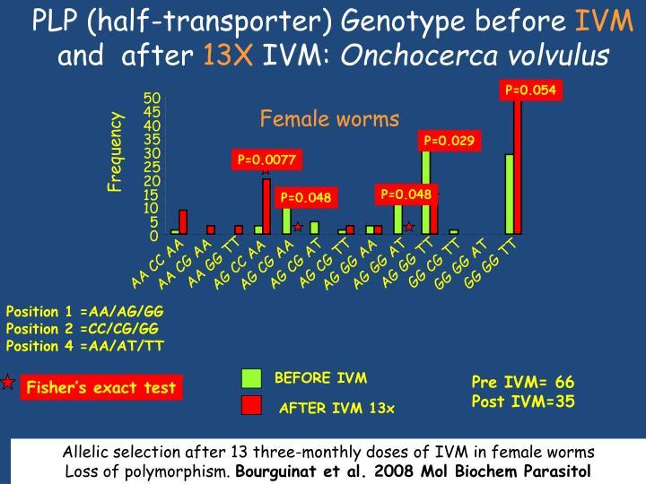 PLP (half-transporter) Genotype before
