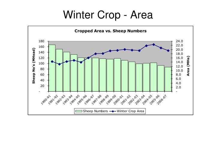Winter Crop - Area