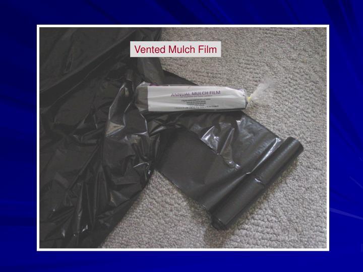 Vented Mulch Film