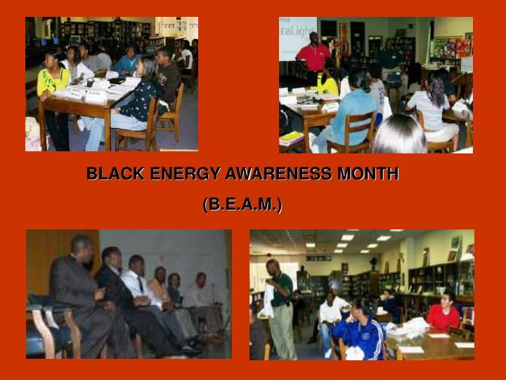 BLACK ENERGY AWARENESS MONTH