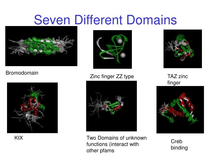 Seven Different Domains