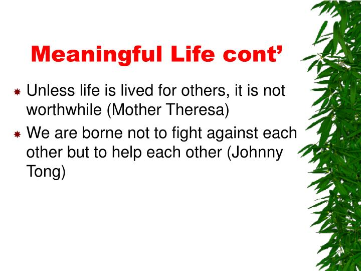 Meaningful Life cont'