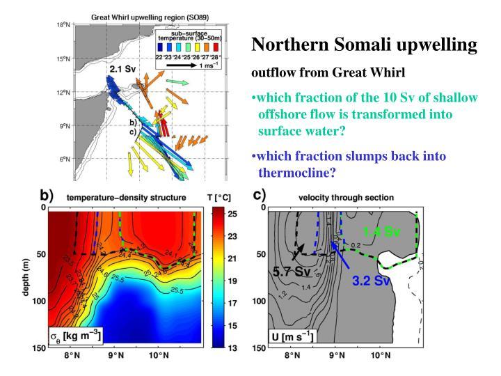 Northern Somali upwelling