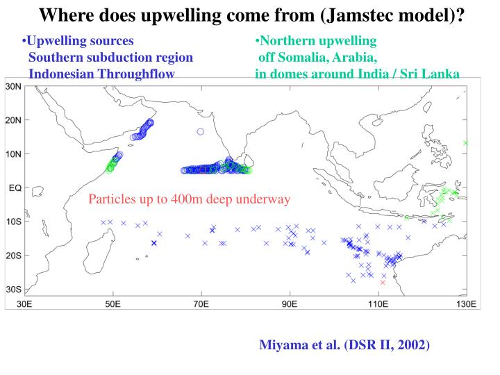 Where does upwelling come from (Jamstec model)?