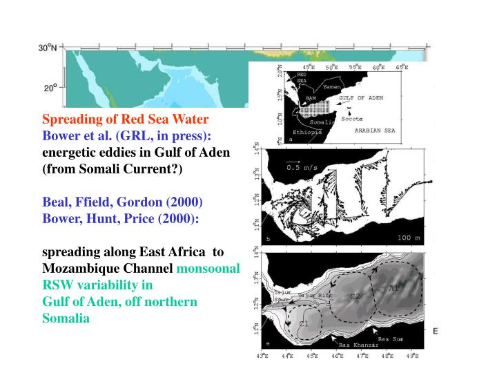 Spreading of Red Sea Water