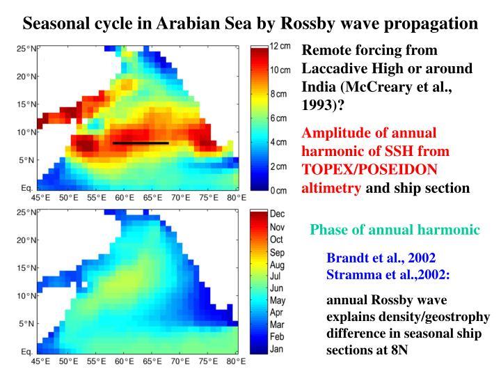 Seasonal cycle in Arabian Sea