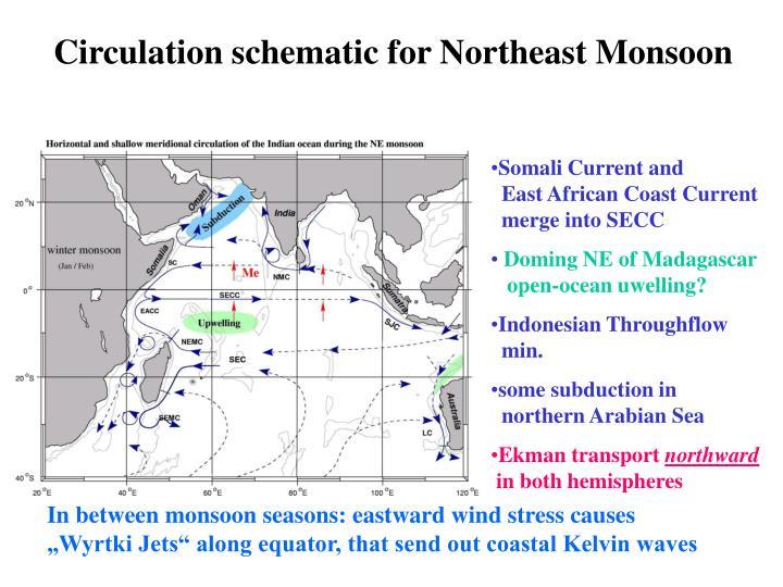 Circulation schematic for Northeast Monsoon