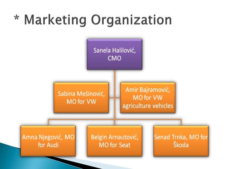 * Marketing Organization