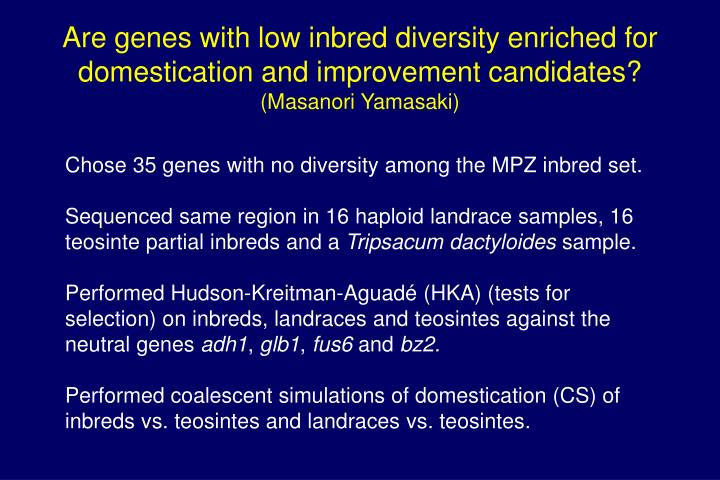Are genes with low inbred diversity enriched for domestication and improvement candidates?