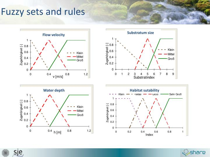 Fuzzy sets and rules