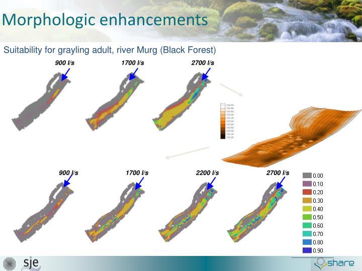Morphologic enhancements