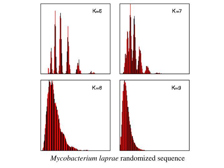 Mycobacterium laprae