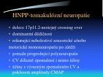 hnpp tomakul zn neuropatie