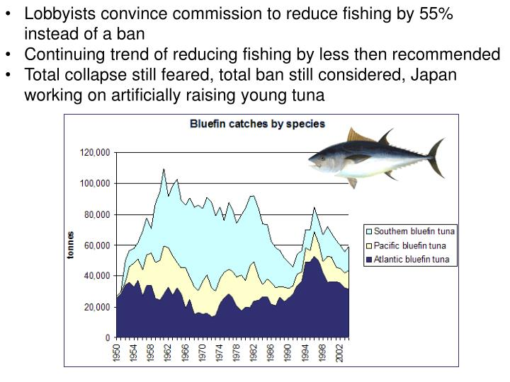 Lobbyists convince commission to reduce fishing by 55% instead of a ban