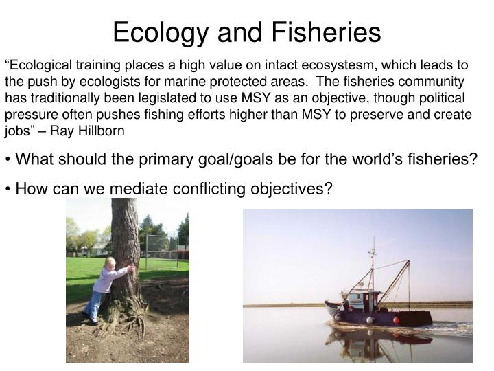 Ecology and Fisheries