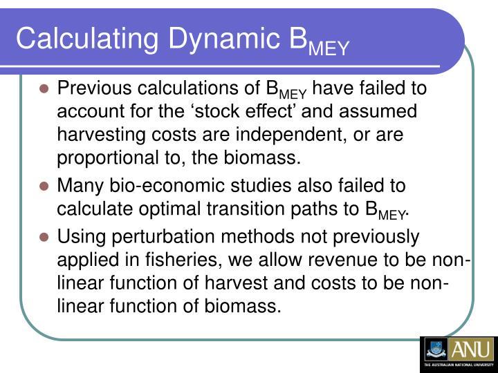 Calculating Dynamic B