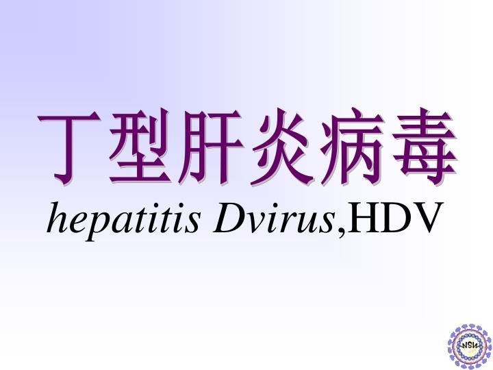 hepatitis Dvirus
