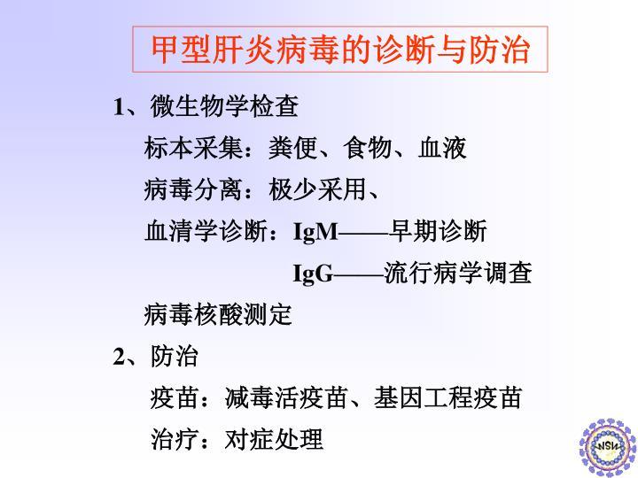 甲型肝炎病毒的诊断与防治