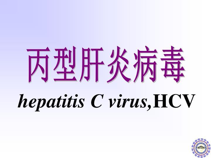 hepatitis C virus,