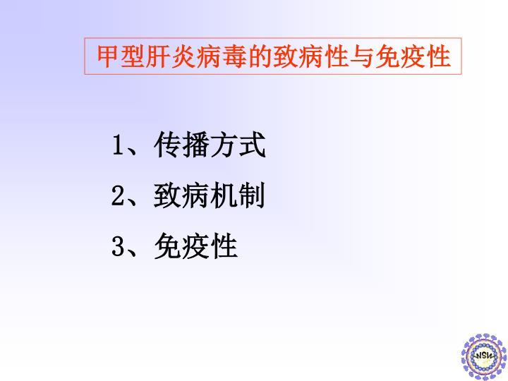 甲型肝炎病毒的致病性与免疫性