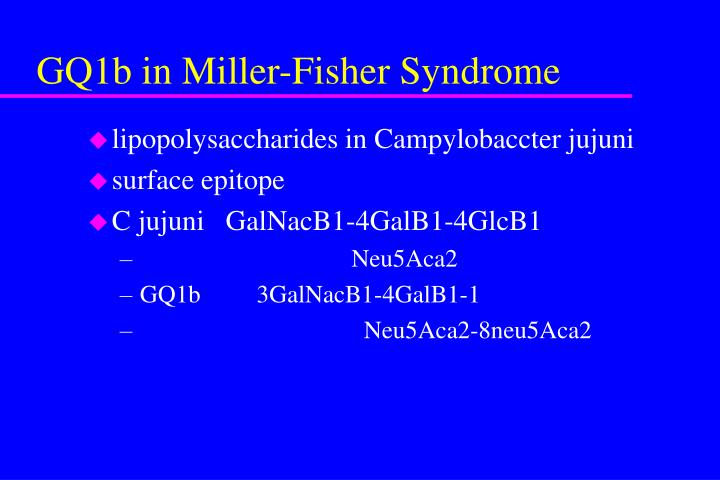GQ1b in Miller-Fisher Syndrome
