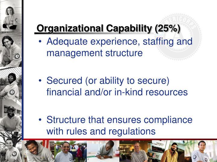 Organizational Capability (25%)