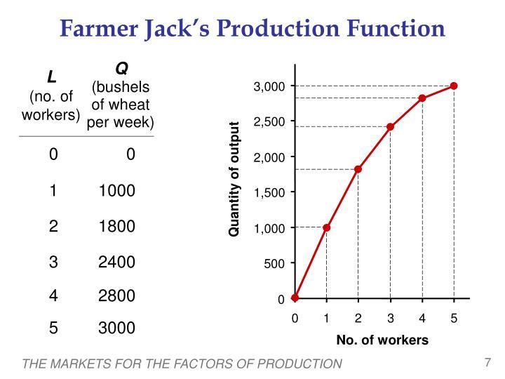Farmer Jack's Production Function