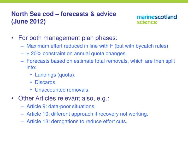 North Sea cod – forecasts & advice