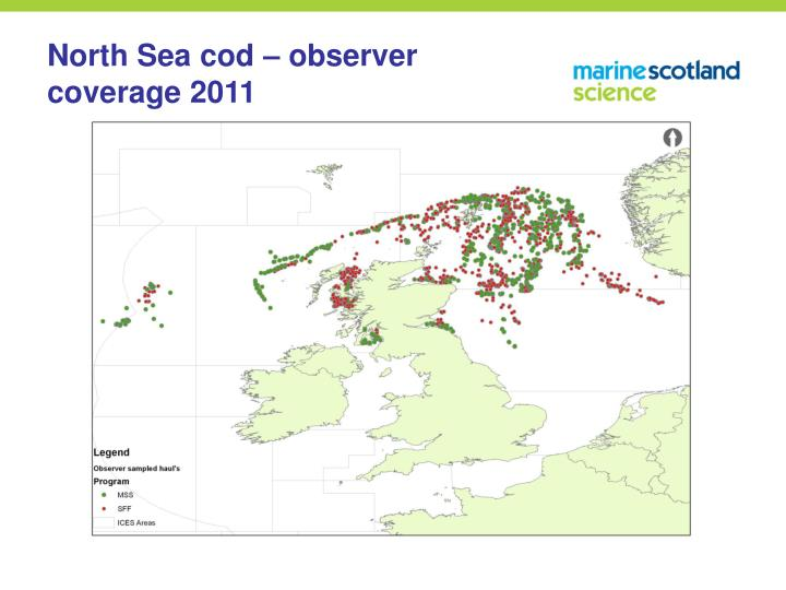 North Sea cod – observer coverage 2011