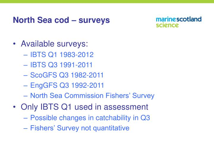 North Sea cod – surveys