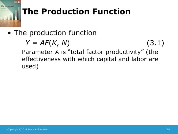 The Production Function