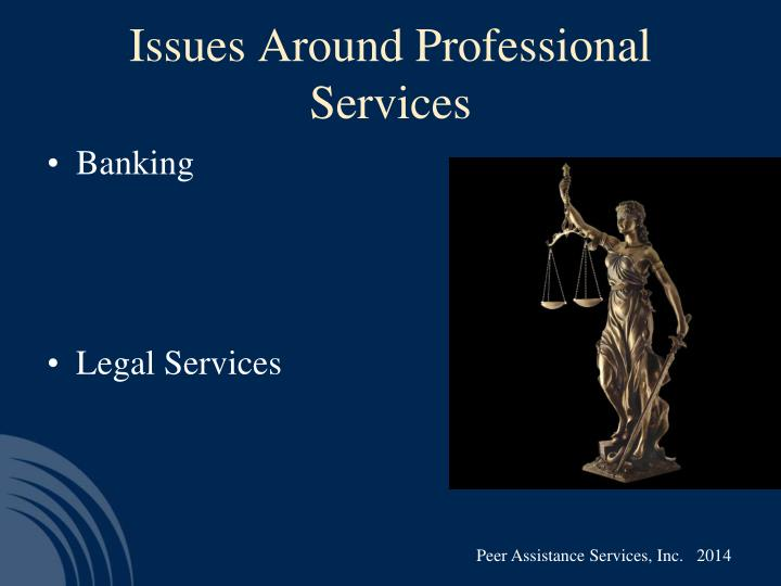 Issues Around Professional Services