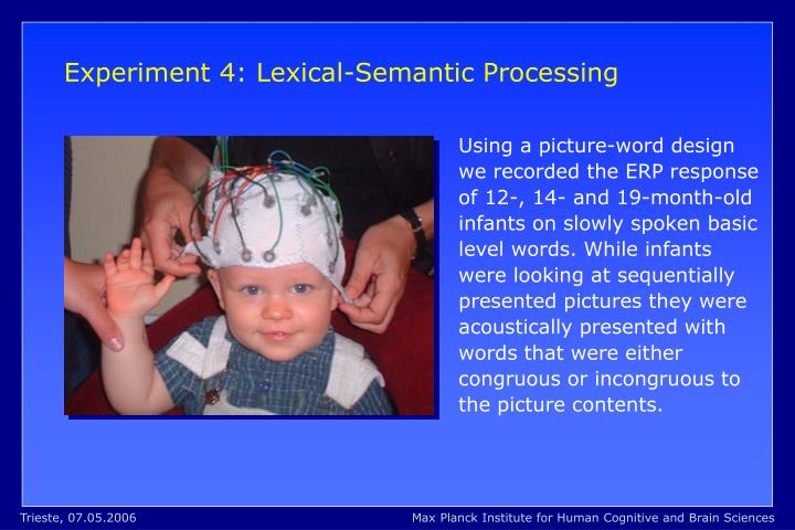 Experiment 4: Lexical-Semantic Processing