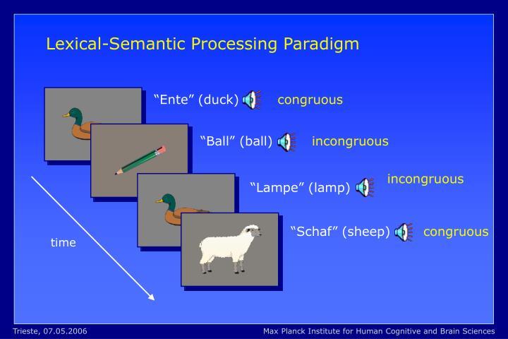 Lexical-Semantic Processing Paradigm
