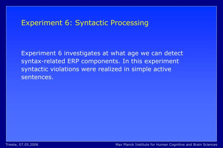 Experiment 6: Syntactic Processing