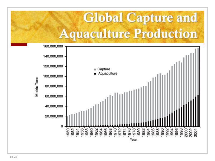 Global Capture and Aquaculture Production