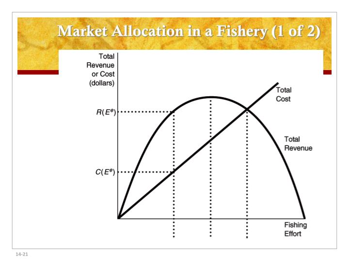 Market Allocation in a Fishery (1 of 2)