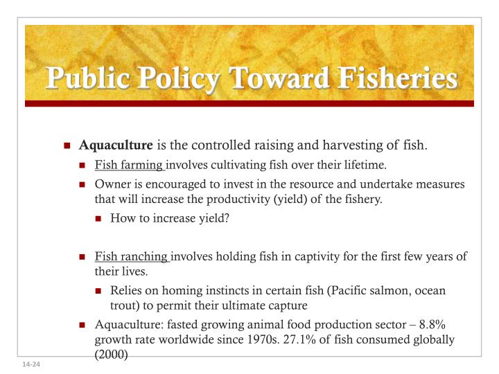 Public Policy Toward Fisheries
