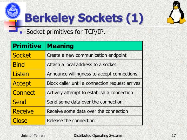 Berkeley Sockets (1)