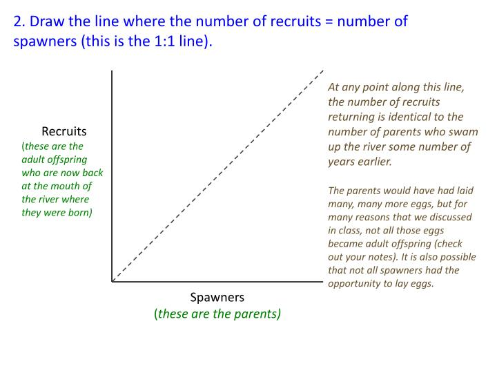 2. Draw the line where the number of recruits = number of spawners (this is the 1:1 line).