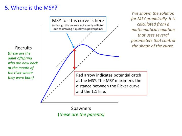 5. Where is the MSY?