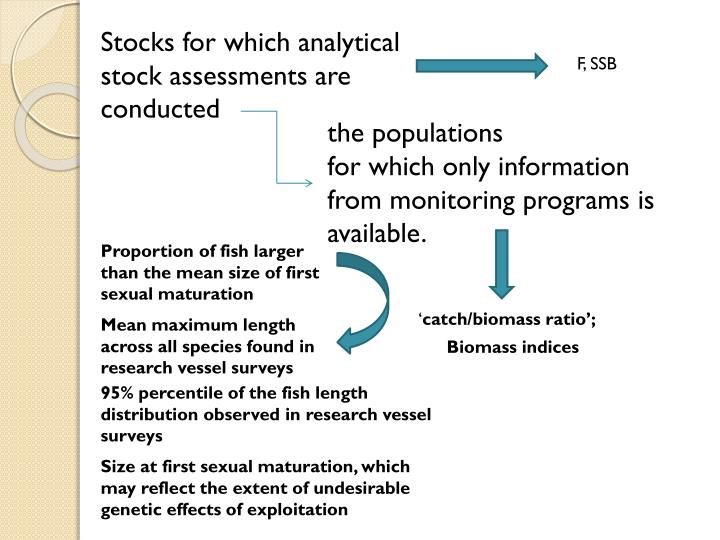 Stocks for which analytical